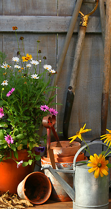 Gardening Amp Landscaping Services In Essex Landscaping
