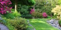 Landscape Maintenance 3