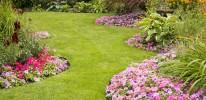 Landscape Maintenance 8